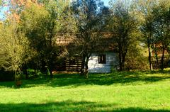 Old rural homestead surrounded by trees Stock Photos
