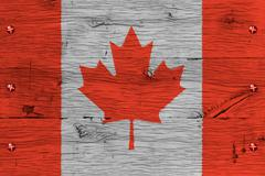 canada national flag painted old oak wood fastened - stock illustration