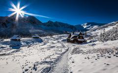enjoy your winter journey - stock photo