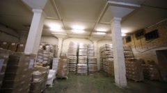 The room of warehouse filled with boxes and pallets. Arkistovideo