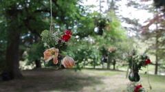 Glass vases with flowers hanging from tree Stock Footage