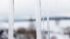 4K Timelapse of melting icicles in winter Stock Footage
