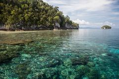 Limestone Islands and Fringing Reef Stock Photos