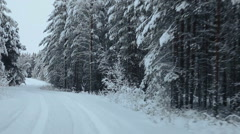 Camera moving on winter snowy forest road in evergreen woods of Karelia, Russia Stock Footage