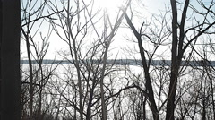Frozen Lake, Sun Through trees, Winter Stock Footage