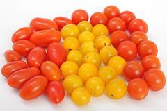 Little tomatoes. - stock photo