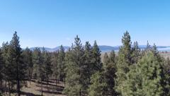 Tree Reveal Flathead Lake, Montana Aerial Stock Footage