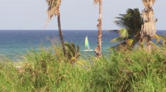 A catamaran sail boat at Caribbean sea Stock Footage