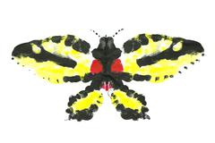 Acrylic insect - stock illustration