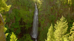 Stock Video Footage of Waterfall in Mount Rainier National Park