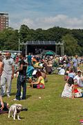 Stock Photo of sefton park, liverpool, uk  june 6, 2014. crowd enjoying the annual african o