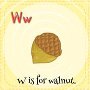 A letter W for walnut Stock Illustration
