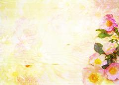 scenic abstract floral background with wild roses made with color filters, wa - stock illustration