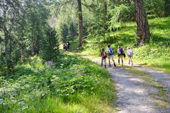 alpin trekking - stock photo