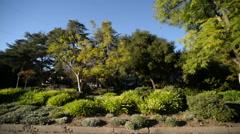 Driving Plates Pasadena Residential CAM4 R 04 La Canada California - stock footage