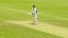 Cricket match at High Wycombe cricket club.-I Stock Footage