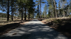 Driving Plates Forest Timelapse CAM1 Front 01 Angeles Crest Highway California - stock footage