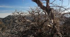 4k; majestic view at roque de las muchachos, la palma Stock Footage