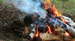 Bonfire, Fire flame close up - stock footage