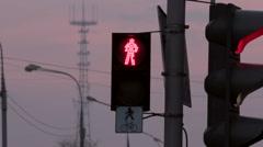 Traffic Light Reeling in Wind Stock Footage