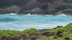 Blue ocean around Makapu, Waves against shore in Hawaii Stock Footage