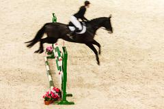 Equitation. show jumping, horse and rider over jump Stock Photos