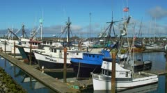 Fishing boats moored at harbour of Crescent City Stock Footage