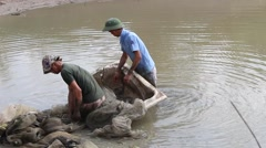 Workers freshwater fishing pond Stock Footage