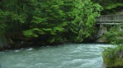 Rapids of Lake McDonald in Glacier National Park Stock Footage