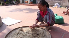A peasant woman working at home, rice, seeds Stock Footage