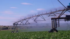 Potato field being irrigated with pivot sprinkler system Stock Footage