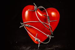 Heart in Barbed Wire - stock photo