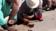 Stock Video Footage Women Are Dug Out Of The Sand Shells Stock Footage