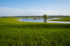 green grass field and city far off. focus on the foreground!!! shallow dof!!! - stock photo