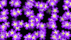 4k Color flower petal nature neon pattern&Colorful array matrix background. Stock Footage