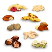 Stock Illustration of Nuts Decorative Set