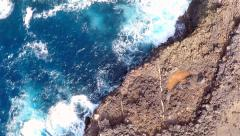 Aerial view of Buracona  in Sal Island Cape Verde - Cabo Verde Stock Footage