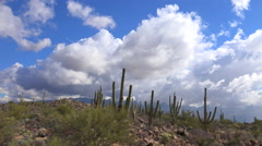 4K Hiker Zips Through Arizona Desert Landscape Time Lapse Stock Footage