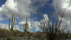 Beautiful Arizona Desert Landscape Time Lapse Stock Footage