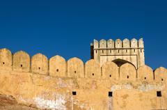 amber fort in jaipur - stock photo