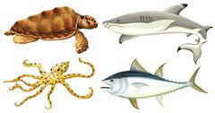 Different sea creatures - stock illustration
