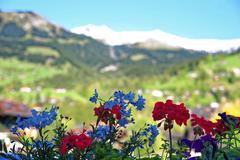 Landscape at Switzerland - stock photo