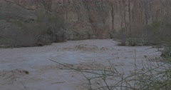 Desert flood og stream 4K 24P Stock Footage