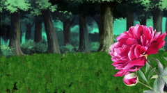 Nature, Rose, Forest, Green Field - stock footage