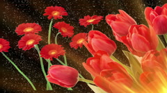 Nature, Red Flowers Stock Footage