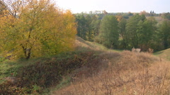 Wide Shot of trees at Gorodetske village in autumn, Zhytomyr province, Ukraine Stock Footage