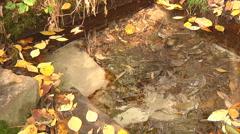 Mid Shot of water stream at Gorodetske village in Zhytomyr province, Ukraine - stock footage