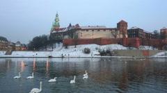 Swans float across Vistula near Wawel castle on a sunset in the winter, Krakow Stock Footage