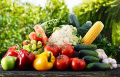assorted raw organic vegetables in the garden. - stock photo