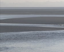 Flood current, incoming tide at tidal bay, meandering creek - medium shot Stock Footage